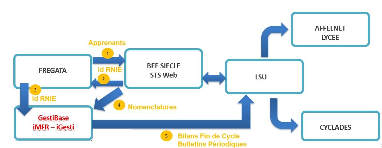 GestiBase_LSU_2019